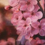 цветы картина маслом научиться рисовать поэтапно уроки мастер-классы обучение арт мастерская петербург артмуза
