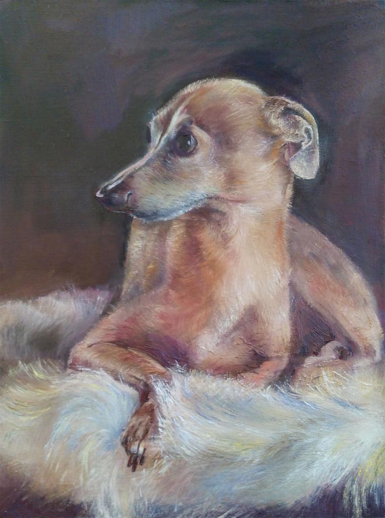 собака портрет домашние питомцы как рисовать собаку шерсть краски кисть мастихин живопись муза алексей жуков старые мастера современные художники
