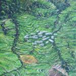 #рис #рисовыеполя #террасы #индия #пейзаж #живописьмаслом